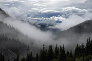 clouds-cloudy-forest-trees