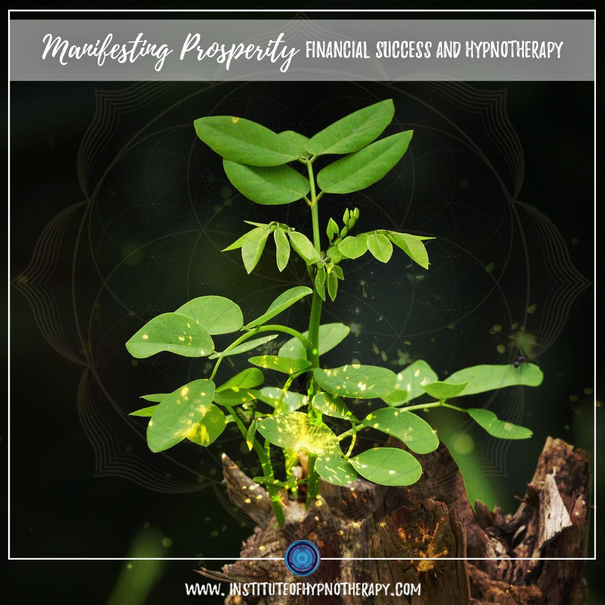 Conscious Community – Manifesting Prosperity