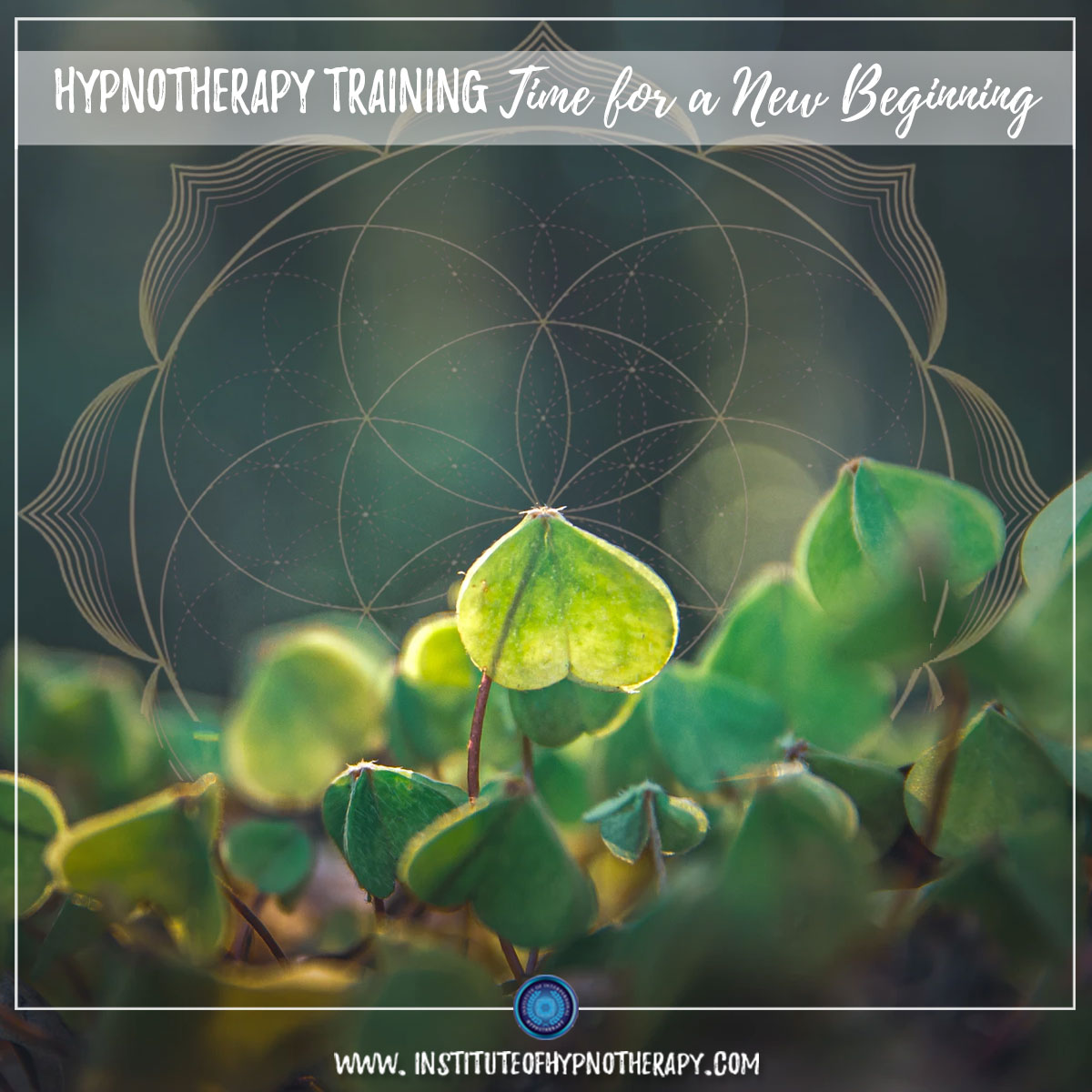 Hypnotherapy – Time for a New Beginning