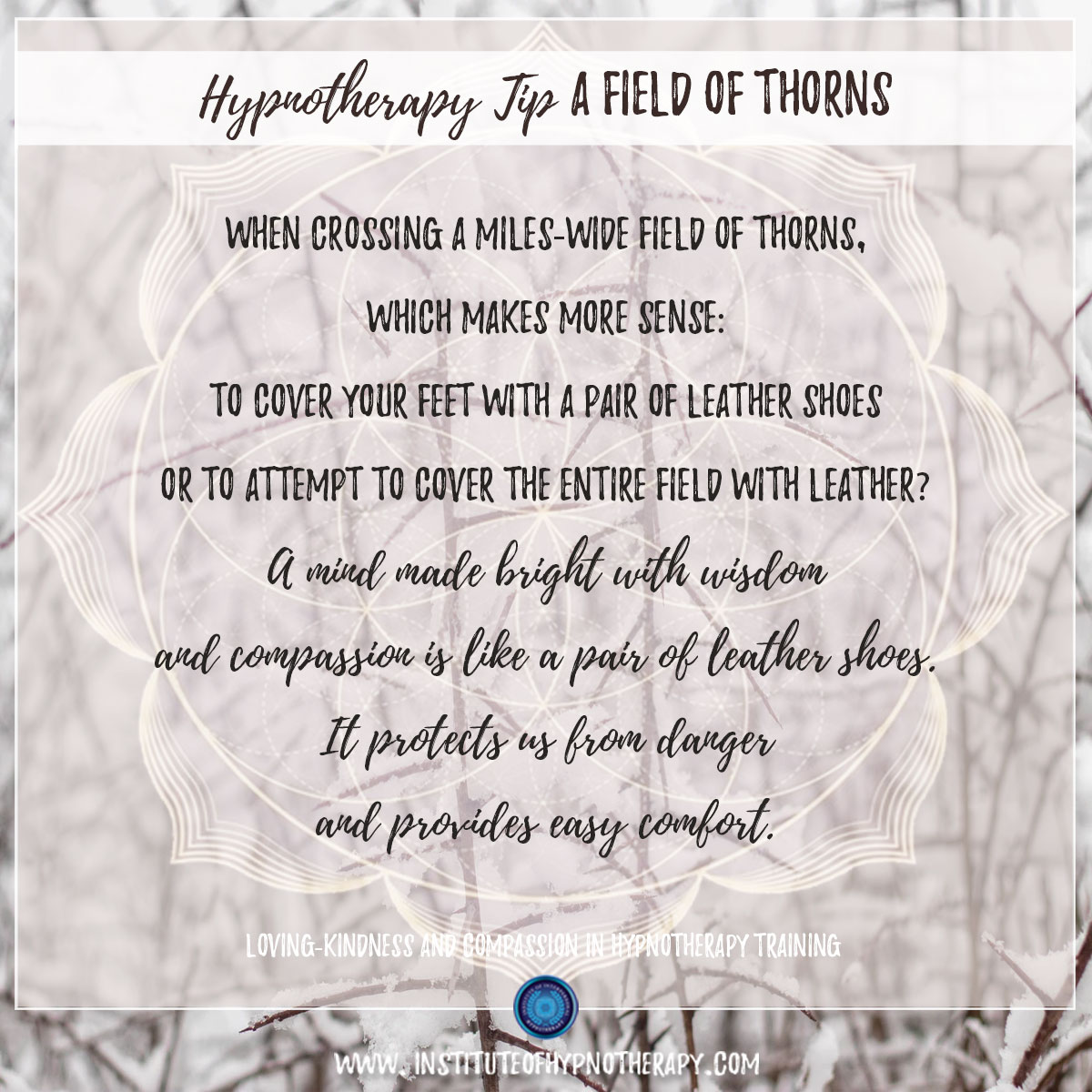 Hypnotherapy Tip : A Field of Thorns